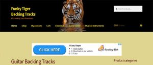 Funky Tiger backing tracks instrumental music