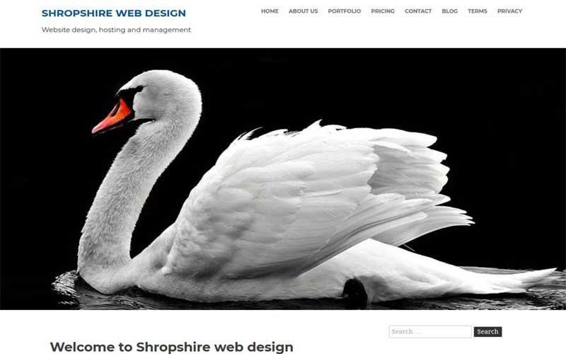 Shropshire web design without Google AMP